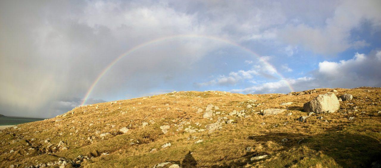 Rainbow No. 342