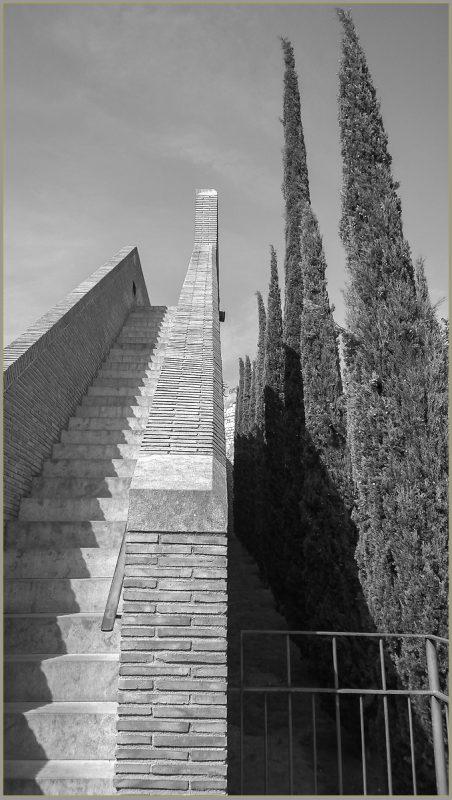 Cypress tress and brick
